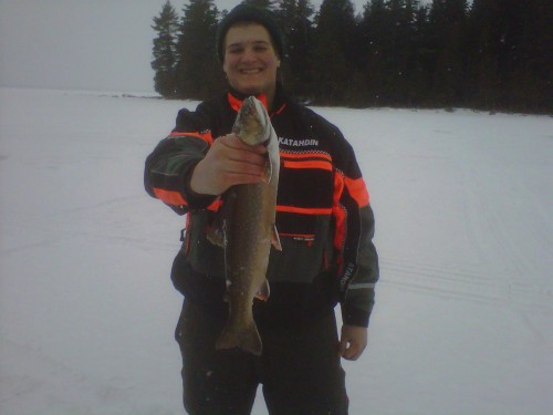 "Fat 20"" Brookie from Moosehead Lake"